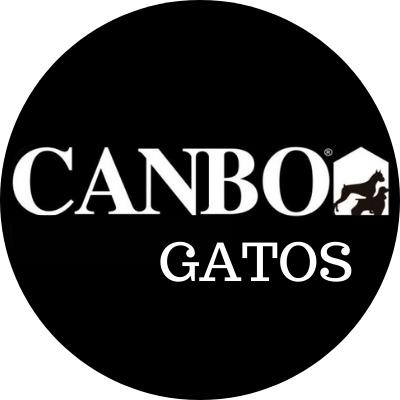 Canbo Gatos